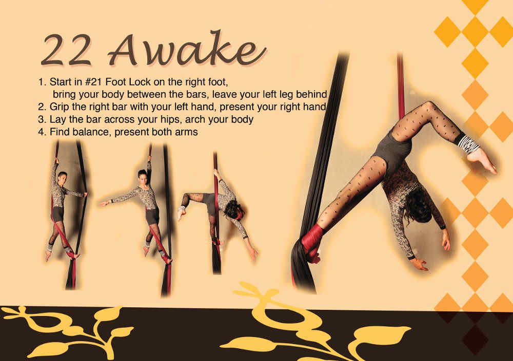 22-yellow-awake-back