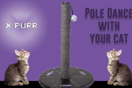 Introducing X-Purr Pole For Cats With Cats Inspired Tutorials.